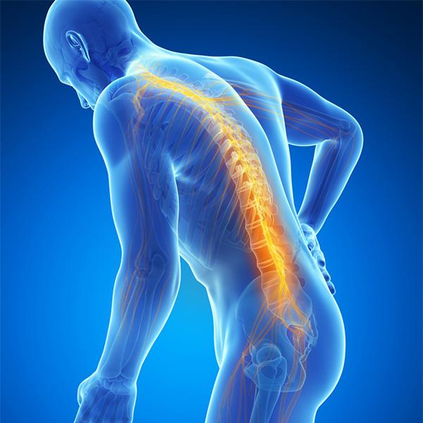 Trastornos de la columna y médula espinal